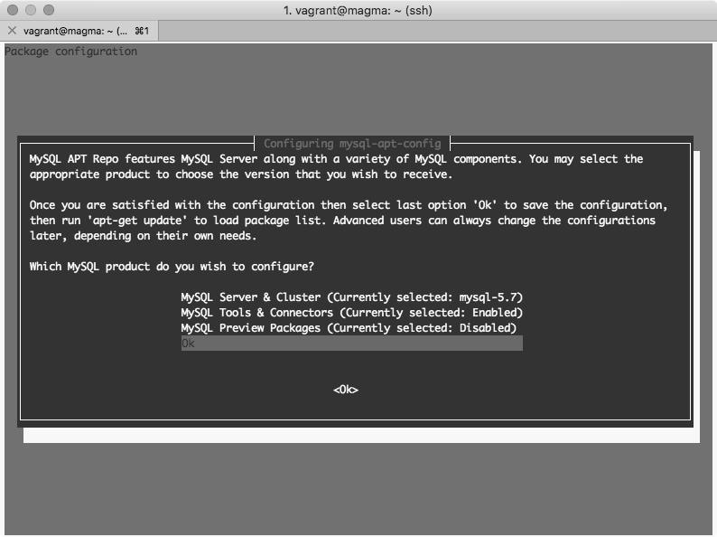 MySQL opciones de configuración en Debian